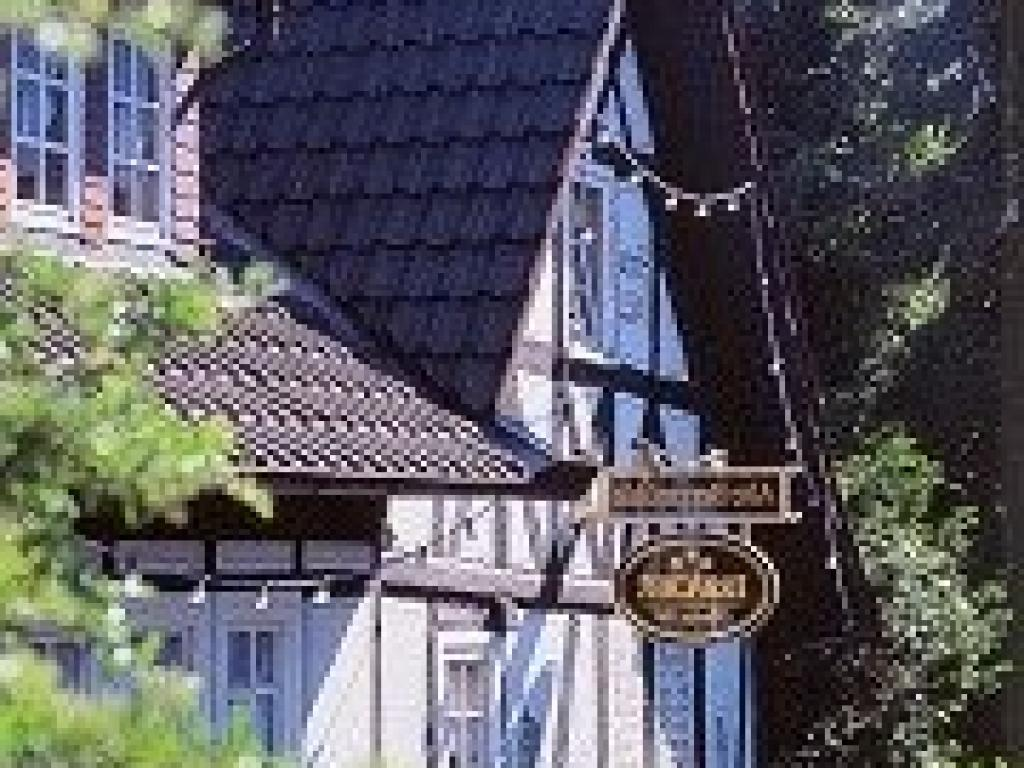 Alte Bergmühle #1